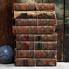 Twine-bound 18th-century Shakespeare stack