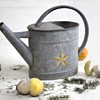 Early-1900s French zinc watering can
